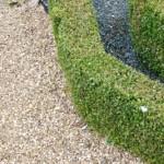 Jak na ohraničení vaší zahrady? Živým plotem