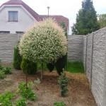 Když se řekne betonový plot